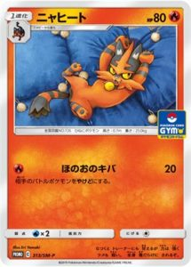313/SM-P Torracat | Pokemon TCG Promo